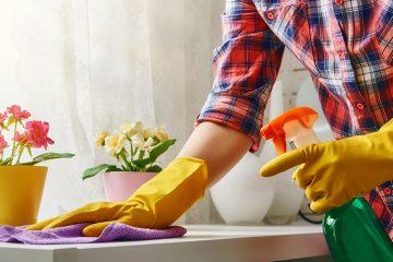 Capacitação dos empregados domésticos